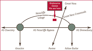 Brisbourne Geese for Christmas - location map